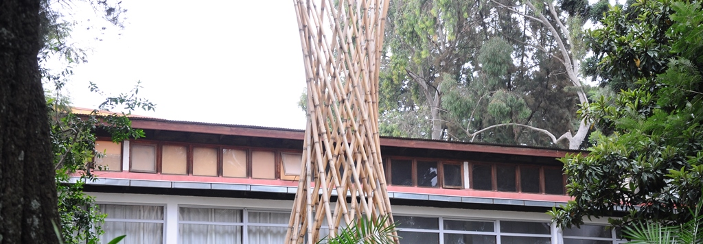 Addis Ababa University Ethiopian Institute of Architecture