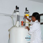 Students working in Laboratory